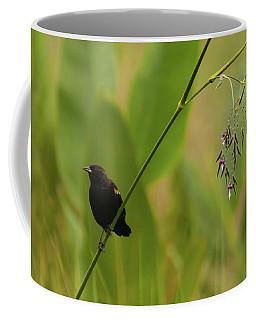 Red-winged Blackbird On Alligator Flag Coffee Mug