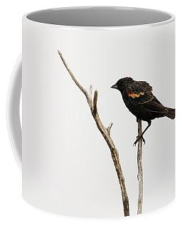 Red Winged Blackbird Coffee Mug