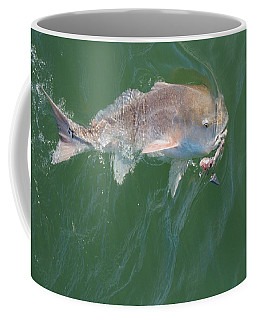 Redfish Hook Line And Sinker Coffee Mug
