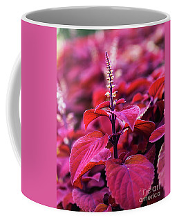 Coffee Mug featuring the photograph Reds by Dheeraj Mutha