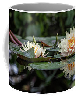 Delicate Reflections Coffee Mug