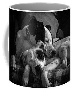 Coffee Mug featuring the photograph Rescued And Best Friends  by Michael Hughes