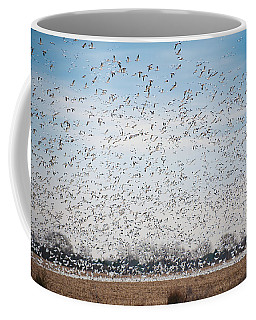 Resting On The Flyway Coffee Mug