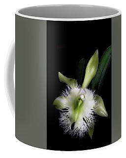 Rhyncholaelia Digbyana Coffee Mug
