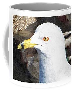 Ringbilled Gull Portrait Coffee Mug