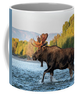 Coffee Mug featuring the photograph River Crossing by Mary Hone