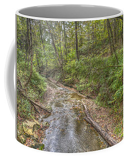 River Flowing Through Pine Quarry Park Coffee Mug