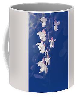Coffee Mug featuring the photograph Robinia Pseudoacacia  by Jaroslav Buna
