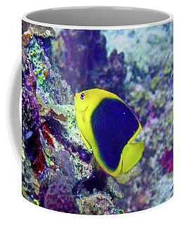 Rock Beauty Coffee Mug