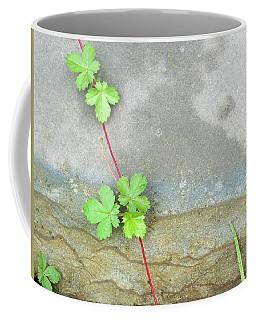 Rock Stain Abstract 4 Coffee Mug