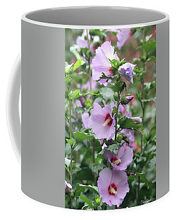 Coffee Mug featuring the photograph Rose Of Sharon Flowers by Trina Ansel
