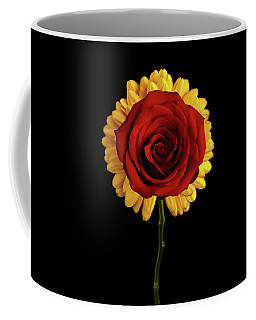 Coffee Mug featuring the photograph Rose On Yellow Flower Black Background by Sergey Taran