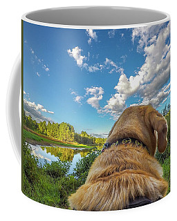 Coffee Mug featuring the photograph Ross Pond Morning by Matthew Irvin