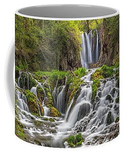 Roughlock Falls II Coffee Mug
