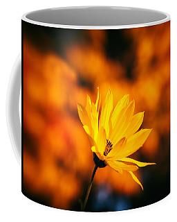 Coffee Mug featuring the photograph Rudbeckia Grandiflora 3 by Jaroslav Buna