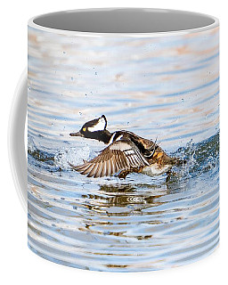 Running Take Off -- Hooded Merganser Coffee Mug