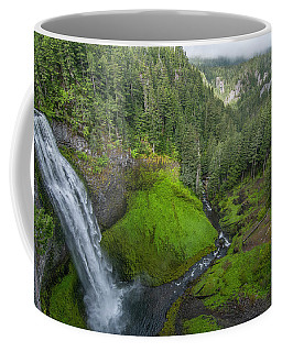 Coffee Mug featuring the photograph Salt Creek Falls And Gorge by Matthew Irvin