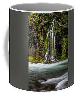 Coffee Mug featuring the photograph Salt Creek Falls At Salmon Creek by Matthew Irvin