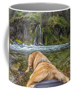 Coffee Mug featuring the photograph Salt Creek Falls By Photo Dog Jackson by Matthew Irvin