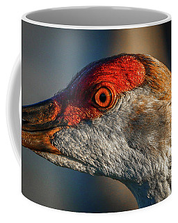 Coffee Mug featuring the photograph Sandhill Close Up Portrait by Tom Claud