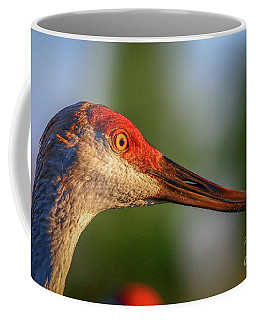 Coffee Mug featuring the photograph Sandhill Sunlight Portrait by Tom Claud