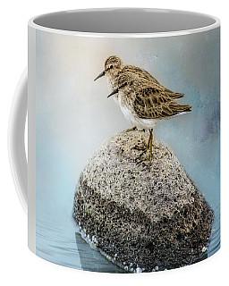 Sandpipers On A Rock Coffee Mug