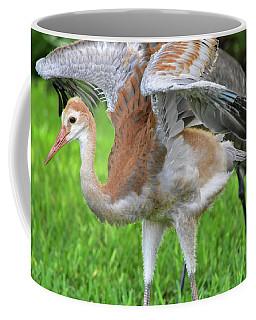 Sandy Crane Shows New Feathers Coffee Mug