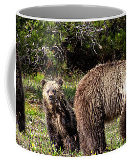 Coffee Mug featuring the photograph Say Hello by Mary Hone