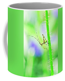 Say Hello To My Little Green Insect Friend Coffee Mug