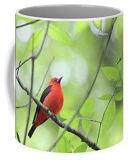 Coffee Mug featuring the photograph Scarlet Tanager by Rick Veldman