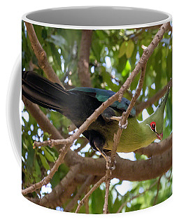 Schalow's Turaco Coffee Mug
