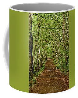 Scotland. Killiecrankie. Path Through The Trees. Coffee Mug