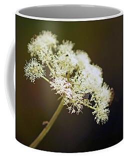 Scotland. Loch Rannoch. White Flowerhead. Coffee Mug