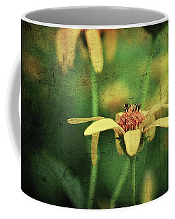 Coffee Mug featuring the photograph Scratched by Michelle Wermuth
