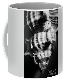 Sea Spiral  Coffee Mug