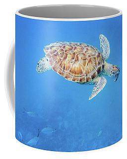 Sea Turtle And Fish Swimming Coffee Mug