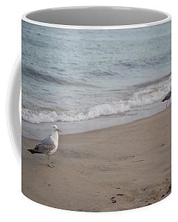 Seagulls At Misquamicut Coffee Mug