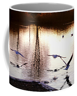 Seagulls In The Morning Coffee Mug