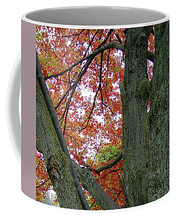 Seeing Autumn Coffee Mug