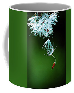 Coffee Mug featuring the photograph Seeking by Michelle Wermuth