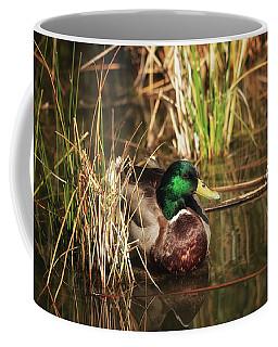 Coffee Mug featuring the photograph Serene by Rick Furmanek