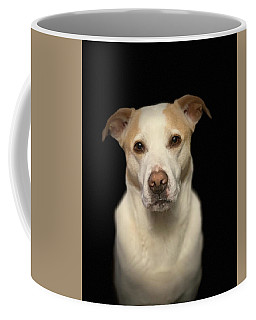 Seriously Snofie Studio Shot Coffee Mug