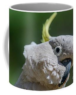 Seriously? Coffee Mug