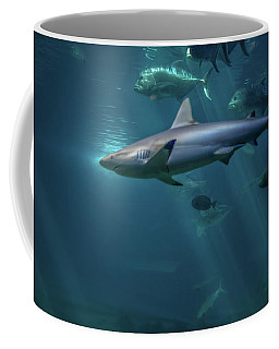 Shark Attack Coffee Mug