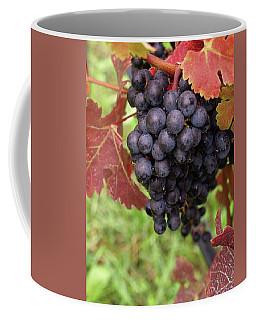Shalestone - 1 Coffee Mug