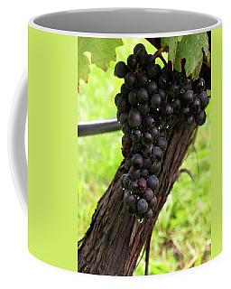 Shalestone - 11 Coffee Mug