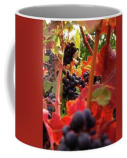 Shalestone - 3 Coffee Mug