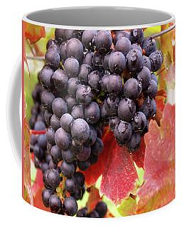 Shalestone - 5 Coffee Mug