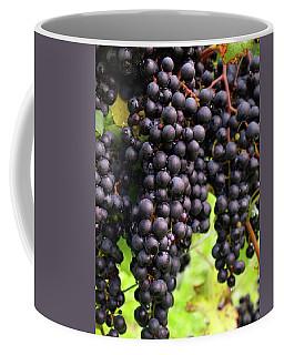 Shalestone - 7 Coffee Mug