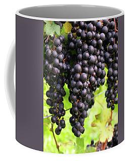 Shalestone - 8 Coffee Mug